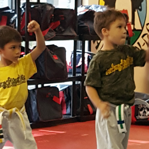 Photo of Lil Dragons Martial Arts Program for children 3-6 years old
